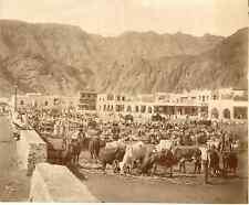 Yemen, Aden, Camels Market, Bazar des Chameaux Vintage albumen print.  Tirage