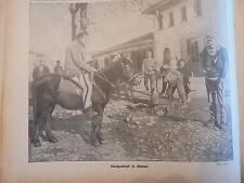 1916 la semaine 14 skutari facteur tsiganes Bad Nauheim Berlin Charlottenburg