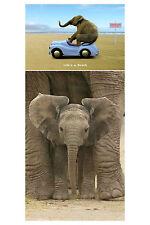 Big Ears Life's a Beach 2 Individual Posters! Elephants cute kids room dorm New