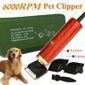 Pro 55W Electric Pet Dog Hair Trimmer Horse Cat Grooming Clipper Shaver Comb Kit