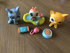 Littlest Pet Shop LPS Authentic Shorthair cat #855 ladybug #856 terrier dog #857