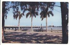 Vintage Postcard Green Bridge Manatee River Bradenton Palmetto Florida Fl