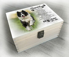 Border Collie Dog breed, urn / memory box for cremation ashes, any design