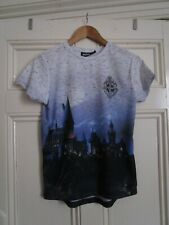 Boy's PRIMARK HARRY POTTER Grey/Blue T-Shirt Top age 11-12 years (VGC)