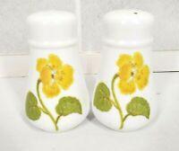 Vintage Noritake Japan Salt and Pepper Shakers Set Flower Time Hard to Find