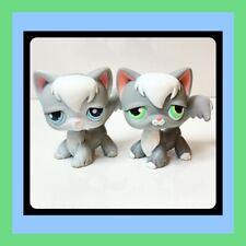 ��Littlest Pet Shop Lps Angora Cat #345 & No # Gray White Blue Teal Eyes ��