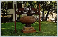 World's Largest Pecan Nut in Seguin, Texas Guadalupe County Postcard New