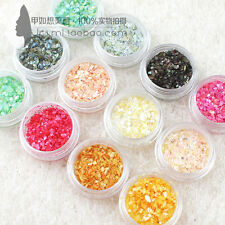 12 Colors Crushed Shell Chips Powder UV Acrylic System Nail Art Tips Decoration