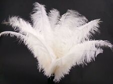 5 beautiful white ostrich feathers 20-25 cm / 8-10 inches decoration