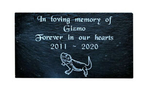 Personalised Engraved Pet Memorial Grave Marker Plaque Lizard Bearded Dragon