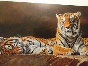"Alan M Hunt  ""Just Warming Up Nicely"" Tigers Ltd Edition Print - 295/395"