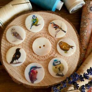 BIRD BUTTONS Designs Cute UK Birds 25mm Knitting Sewing Jewellery Rural Crafts