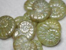 10 CZECH GLASS SNAIL FOSSIL GLASS BEADS PALE GREEN LUSTER 17 x 13mm (BBC2004)