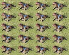Horse Racing Sport Running Diorama Figure Scale Model OO Scale Set 20pcs K599x20