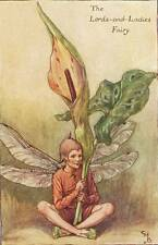 Flower Fairies: The Lords-and-Ladies Fairy Vintage Print 1930 Cicely Mary Barker