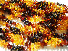 "Lo-10 Genuine Baltic Amber  Necklaces 15"" 38cm"