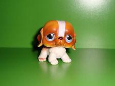 A1  FIGURINE PETSHOP LITTLEST PET SHOP CHIEN GROS YEUX DOG PERO