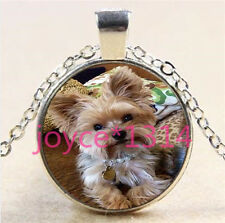 Glass Chain Pendant Necklace #6032 Yorkshire Terrier Cabochon Tibetan silver