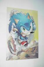 Sonic the Hedgehog Poster #16 Sonic Speeding over Rock Shuttle Loop Movie