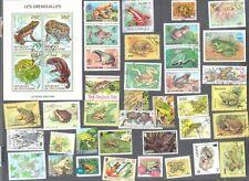Grenouilles et Crapauds collection 40 tous différents-amphibiens