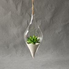Hanging Glass Vase Flower Container Home Decor Terrarium Planter Clear Garden