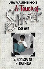 A Touch Of Silver Trade Paperback
