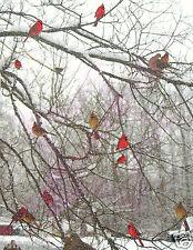 Bird Poster/Winter Scene/Cardinal Poster/Birds/ 17x22 Artist rendition photo