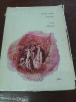 Isaac Asimov - DODICI VOLTE DOMANI - 1964 - 1° Ed. - SFBC - C.E.L.T.