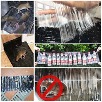 Super Big Size Non-toxic Catcher Rat Snake Bugs Mice Mouse Rodent Glue Traps~~