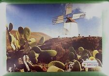 CPA Spain Islas Canarias Windmill Moulin a Vent Windmühle Molin Wiatrak w133