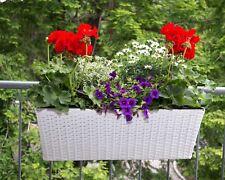 Pflanzkübel Blumenkübel Übertopf Blumenkasten Polyrattan 60x19x20cm weiß.