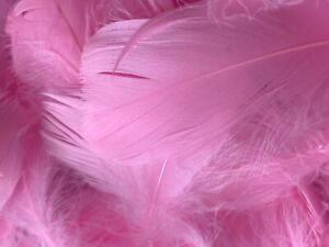 100 Solid Coloured Feathers - Mixed Sizes - Art, Craft, Bubble Balloon - Feather