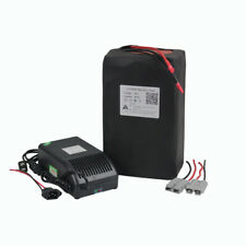36V30Ah Lithium LiFePO4 Battery Pack for Electric Bike Bicycle Ebike 1200W Motor
