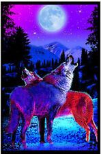 TIMBERWOLVES - BLACKLIGHT POSTER - 24X36 FLOCKED NATURE WOLVES MOON 6027