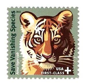 AMUR TIGER Stamp ~ 2011 Save Vanishing Species Semi-Postal Stamp # B4 MINT