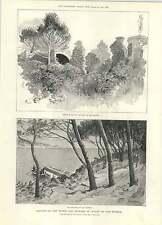 1892 defunto MR Edward Ross segretario Manchester SHEFFIELD Lincs ferroviario