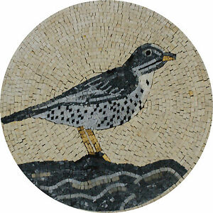Tinny Black And Grey Bird Nature Garden Design Marble Mosaic AN1031