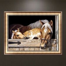 DIY 5D Horse Diamond Embroidery Painting Rhinestone Cross Stitch Home Decor Gift