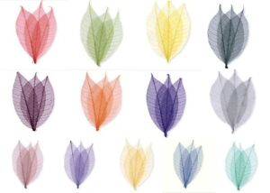 Skeleton Leave Assorted Colours, Sizes & Quantities Your Choice New