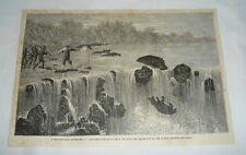 1877 magazine engraving ~ Baby Hippo Goes Over The Waterfall