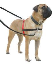 Harnais noir pour petits chiens en maille pour chien