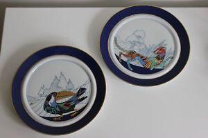 Paio Piatto Porcellana Rosenthal Design B. Doege Toucan E Pantera Fauna