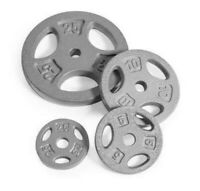 """CAP Standard 1"""" Weight Grip Plates CHOOSE PAIR of 2.5, 5,10, or 25 lb Cast Iron"""