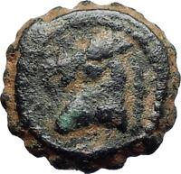 DEMETRIOS I Soter RARE R3 Ancient Seleukid Greek Coin HORSE ELEPHANT i75517