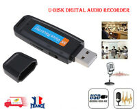Enregistreur vocal Audio Mini stylo numérique USB Dictaphone U-Disk
