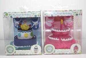 My 1st First Birthday Pink Blue Birthday Cake Hat & Booties Girl Boy Baby Shower