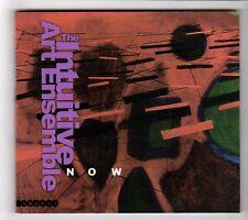 (HA836) The Intuitive Art Ensemble, Now - 2003 CD