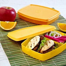 Tupperware Classic Slim Lunch BIG - Best Lunch For School Kids