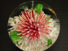 Spectacular Magnum Chrysanthemum Silver Snow Glass Paperweight Vintage Antique
