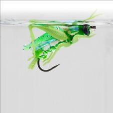 Insekten Käfer Köder Larven Libellen Fliegen Fischen Angeln Lebensecht Ap